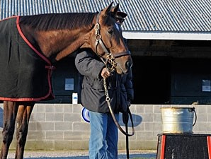 Point of Entry at Keeneland, April 2013.