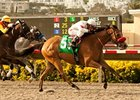 "Tres Borrachos flies home in the San Diego at Del Mar.<br><a target=""blank"" href=""http://www.bloodhorse.com/horse-racing/photo-store?ref=http%3A%2F%2Fpictopia.com%2Fperl%2Fgal%3Fprovider_id%3D368%26ptp_photo_id%3D9621245%26ref%3Dstory"">Order This Photo</a>"