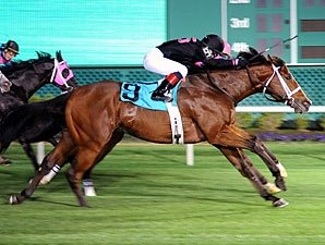 Icon Ike Cuts Back a Bit in Turf Sprint