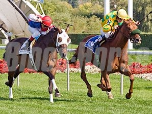 Free Fighter wins the 2009 Stars and Stripes over Brass Hat.
