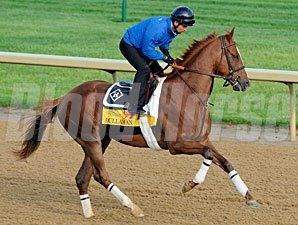 Dullahan works at Churchill Downs 4/30/2012