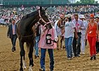 "Rachel Alexandra wore a pink halter before the Kentucky Oaks to show support for breast cancer research.<br><a target=""blank"" href=""http://www.bloodhorse.com/horse-racing/photo-store?ref=http%3A%2F%2Fpictopia.com%2Fperl%2Fgal%3Fprovider_id%3D368%26ptp_photo_id%3D8062326%26ref%3Dstory"">Order This Photo</a>"