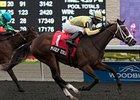Madly Truly won the Mazarine Stakes Oct. 5 on the Woodbine Polytrack.