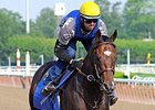 Zayat Family: Paynter Continues Improvement