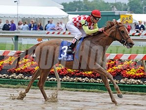 Palanka City cruises to victory in the Miss Preakness.