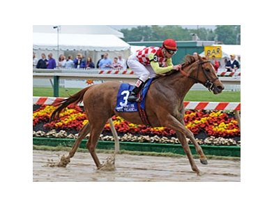 "Palanka City cruises to victory in the Miss Preakness.<br><a target=""blank"" href=""http://www.bloodhorse.com/horse-racing/photo-store?ref=http%3A%2F%2Fpictopia.com%2Fperl%2Fgal%3Fprovider_id%3D368%26ptp_photo_id%3D4531882%26ref%3Dstory"">Order This Photo</a>"