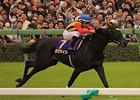 Logotype wins the Satsuki Sho.