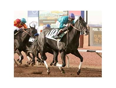 Liberty Bull scores by two lengths in the $600,000 WinStar Derby at Sunland Park March 16.