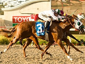 Baffert Wins Eighth Futurity