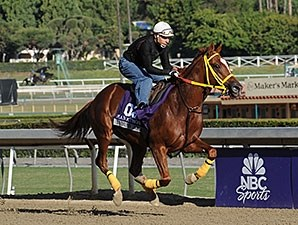 Indian Jones - 2013 Breeders' Cup, October 30, 2013.