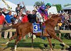 "California Chrome<br><a target=""blank"" href=""http://photos.bloodhorse.com/TripleCrown/2014-Triple-Crown/Preakness-Stakes-139/i-dChc372"">Order This Photo</a>"