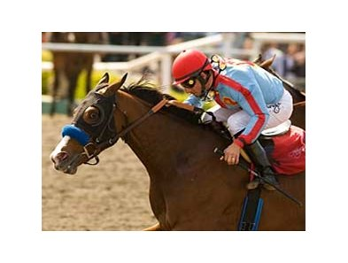 Tough Tiz's Sis takes the Hawthorne (gr. III) at Hollywood Park on May 4.