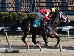 Contessa Excited About Derby Prospect