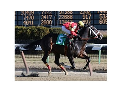 "Eightyfiveinafifty, who broke his maiden by 17 1/4 lengths, tries 2 turns in the Whirlaway.<br><a target=""blank"" href=""http://www.bloodhorse.com/horse-racing/photo-store?ref=http%3A%2F%2Fpictopia.com%2Fperl%2Fgal%3Fprovider_id%3D368%26ptp_photo_id%3D8741661%26ref%3Dstory"">Order This Photo</a>"