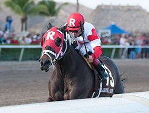 Bernie the Maestro wins the 2012 Claiming Crown Rapid Transit.