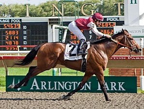 Ocean Ace wins the 2009 Springfield Stakes.