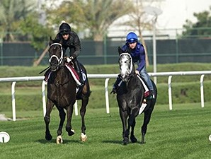 Limario and Meanre work at Meydan March 24.