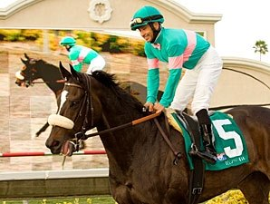 Shirreffs Outlines Zenyatta's Training Plans