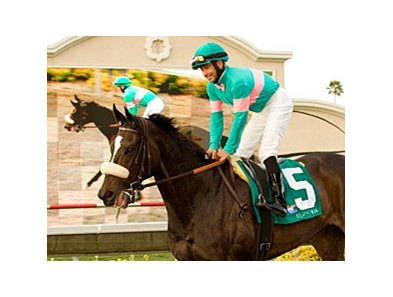 "Zenyatta<br><a target=""blank"" href=""http://www.bloodhorse.com/horse-racing/photo-store?ref=http%3A%2F%2Fpictopia.com%2Fperl%2Fgal%3Fprovider_id%3D368%26ptp_photo_id%3D9133264%26ref%3Dstory"">Order This Photo</a>"