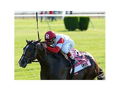 "Real Solution<br><a target=""blank"" href=""http://photos.bloodhorse.com/AtTheRaces-1/At-the-Races-2014/i-5ZRwSK8"">Order This Photo</a>"