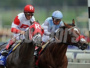 Goldencents (right)  and Vicar's in Trouble, Breeders' Cup Dirt Mile 2014