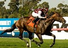"Marlang galloped to victory in the Sunset Handicap at Hollywood Park. <br><a target=""blank"" href=""http://www.bloodhorse.com/horse-racing/photo-store?ref=http%3A%2F%2Fpictopia.com%2Fperl%2Fgal%3Fprovider_id%3D368%26ptp_photo_id%3D9110573%26ref%3Dstory"">Order This Photo</a>"