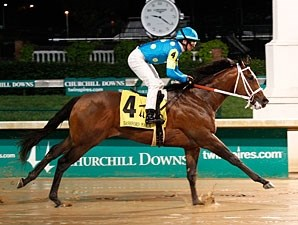 Debt Ceiling wins the 2013 Bashford Manor.