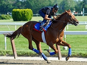 Animal Kingdom at Belmont June 2011.