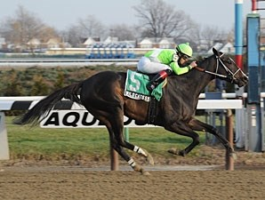 Wildcat's Smile wins the 2012 Sarcastic Stakes.