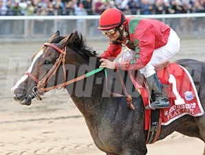 Flat Out wins the 2011 Jockey Club Gold Cup.