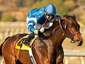 Better Lucky in the Matriarch Stakes.