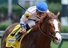 Shackleford finished 2nd in the 2011 Breeders' Cup Dirt Mile.