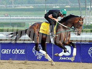 To Honor and Serve - Breeders' Cup 2012.