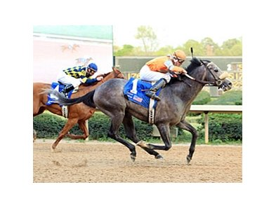 Win Willy sweeps by Misremembered to win the Oaklawn Handicap.