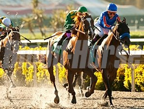 Dullahan wins the 2012 Pacific Classic.
