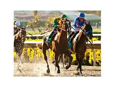 Game On Dude (right) finished 2nd to Dullahan (left) in the 2012 Pacific Classic.
