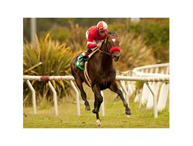 "Acclamation spurts away from the field to win the Jim Murray.<br><a target=""blank"" href=""http://www.bloodhorse.com/horse-racing/photo-store?ref=http%3A%2F%2Fpictopia.com%2Fperl%2Fgal%3Fprovider_id%3D368%26ptp_photo_id%3D9525679%26ref%3Dstory"">Order This Photo</a>"