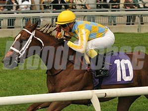 Northern Passion wins the 2011 Natalma.