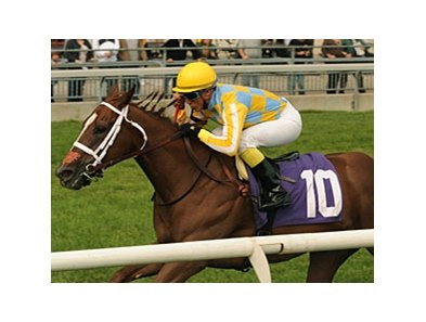 Northern Passion came up the rail to win the Natalma at Woodbine.