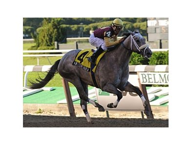 "Matron winner Awesome Maria takes on 6 in the Frizette at Belmont. <br><a target=""blank"" href=""http://www.bloodhorse.com/horse-racing/photo-store?ref=http%3A%2F%2Fpictopia.com%2Fperl%2Fgal%3Fprovider_id%3D368%26ptp_photo_id%3D8494279%26ref%3Dstory"">Order This Photo</a>"