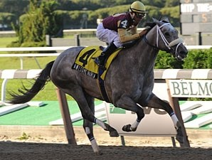 Awesome Maria wins the 2009 Matron.