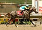 Zensational Bolts to O'Brien Win; 'Cup Next