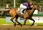 "Lethal Heat, who won six of nine starts in 2008, starts a new year in the Monrovia Handicap.<br><a target=""blank"" href=""http://www.bloodhorse.com/horse-racing/photo-store?ref=http%3A%2F%2Fpictopia.com%2Fperl%2Fgal%3Fprovider_id%3D368%26ptp_photo_id%3D4057475%26ref%3Dstory"">Order This Photo</a>"