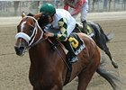 Mucho Macho Man, Alpha Work for Whitney