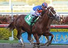 Five Graded Winners Contest Salvator Mile
