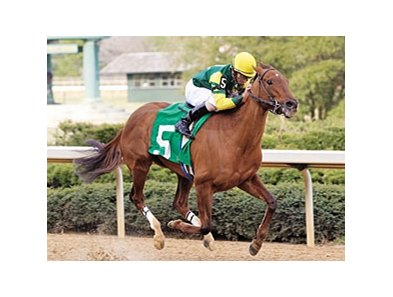 "Hysterical Lady (green and yellow silks) begins her winning move at the head of the stretch in the Azeri (gr. III) at Oaklawn March 9.<br><a target=""blank"" href=""http://www.bloodhorse.com/horse-racing/photo-store?ref=http%3A%2F%2Fpictopia.com%2Fperl%2Fgal%3Fprovider_id%3D368%26ptp_photo_id%3D3820329%26ref%3Dstory"">Order This Phot</a>"