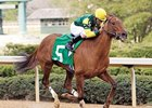 "Hystericallady will miss her rematch with Ginger Punch in the Apple Blossom (gr. I) at Oaklawn.<br><a target=""blank"" href=""http://www.bloodhorse.com/horse-racing/photo-store?ref=http%3A%2F%2Fpictopia.com%2Fperl%2Fgal%3Fprovider_id%3D368%26ptp_photo_id%3D3810300%26ref%3Dstory"">Order This Photo</a>"