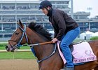 "St. John's River finished second in the Kentucky Oaks.<br><a target=""blank"" href=""http://www.bloodhorse.com/horse-racing/photo-store?ref=http%3A%2F%2Fpictopia.com%2Fperl%2Fgal%3Fprovider_id%3D368%26ptp_photo_id%3D9514668%26ref%3Dstory"">Order This Photo</a>"