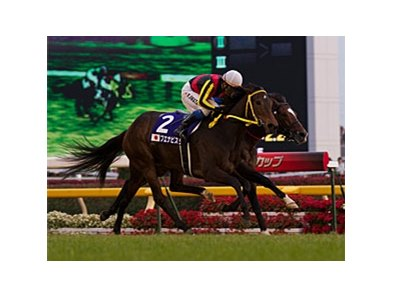Buena Vista rallies late to win the Japan Cup.