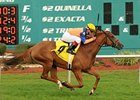 Zagora won Endeavour Stakes at Tampa Bay Downs on Feb. 4.
